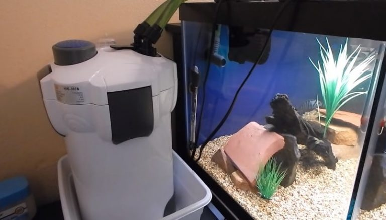 The 10 Best Aquarium Canister Filter Reviews 2019 - My Life Pets