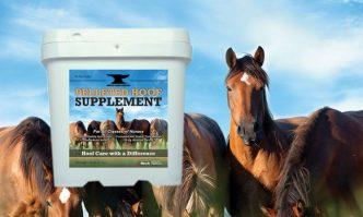 Hoof Supplement For Horse