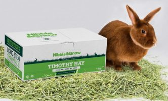 Best Hay for Rabbits